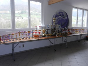 TOURNOI MICHOU 2018 (37)